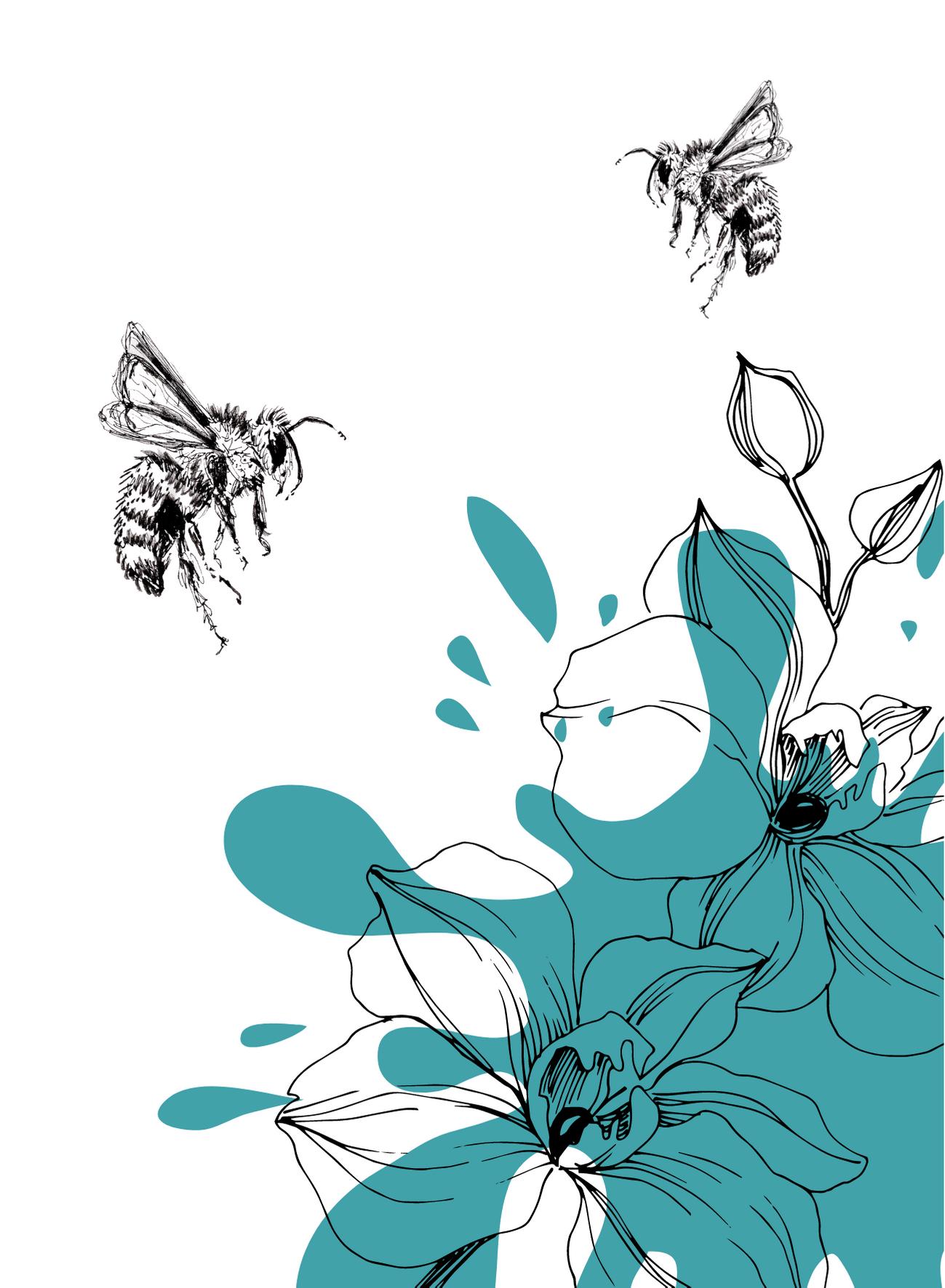BijenSplash2