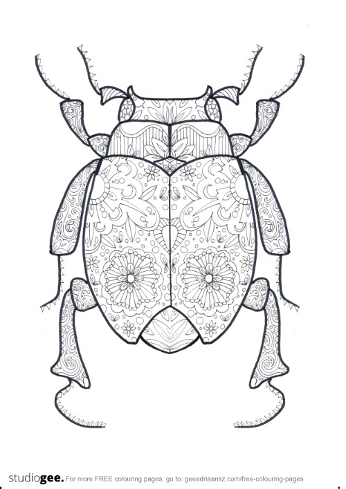 Colouringpage Beetle CFA