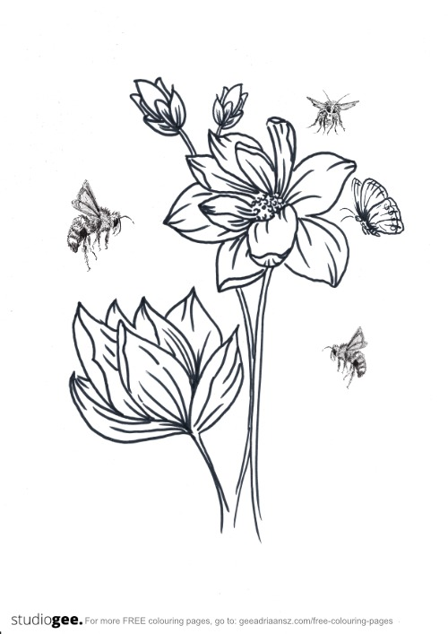 Colouringpage Flowers Bees Butterfly