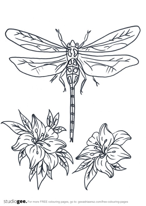 Colouringpage Flowers Dragonfly