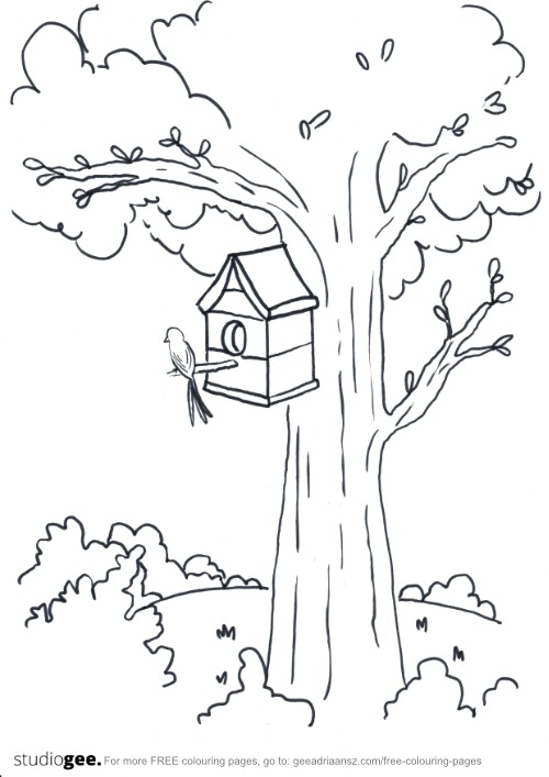 Colouringpage Tree Birdhouse