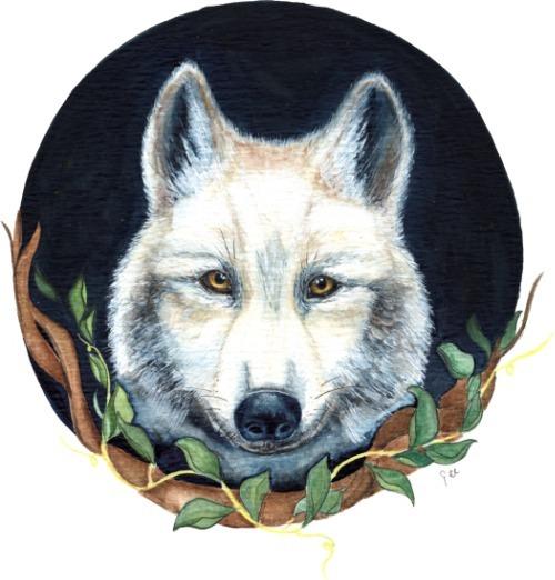 denachtwolf