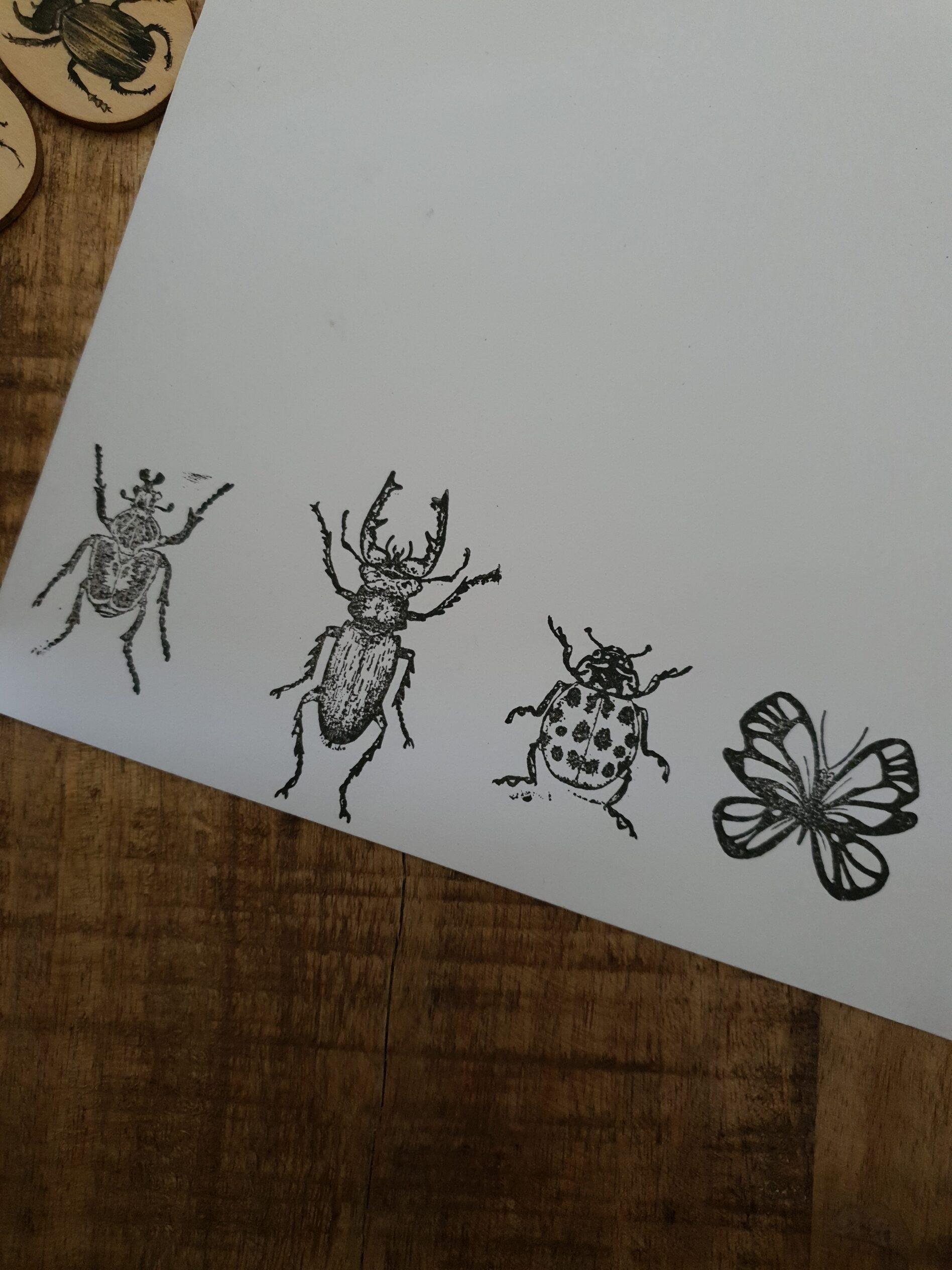 vier insecten op een wit vel gestempeld.
