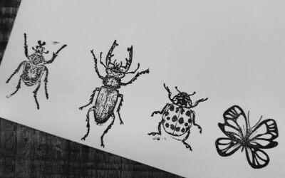 Insect stamps!